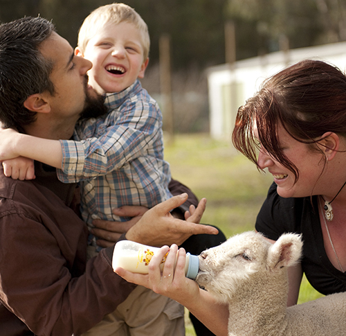 """Boy and parents bottle-feeding a lamb"""