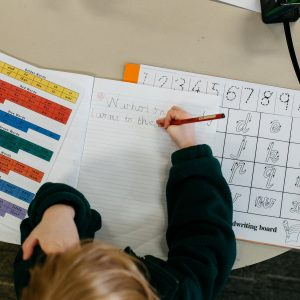 Noah's Ark submission to the NDIS Price Review